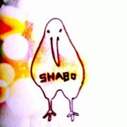 shabo