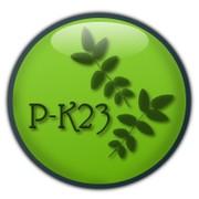 P-K23