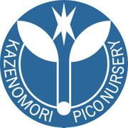 Picoの保育園給食