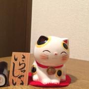 クックUY9DSP☆