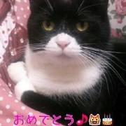 toromaru